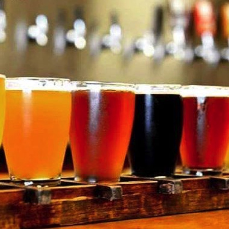 Beer Fest San Quintin 10
